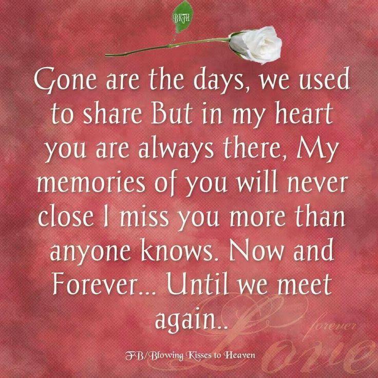 we will meet again verse simmonds