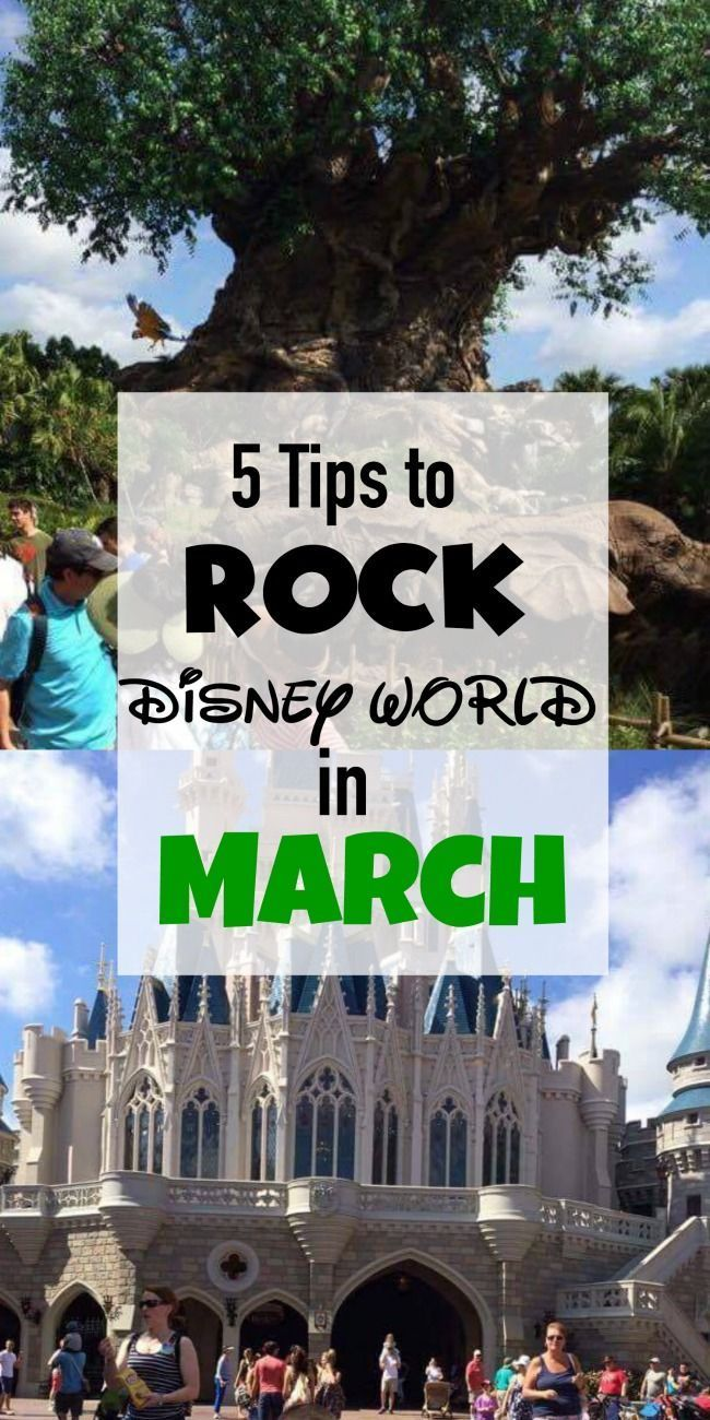 Five tips to help you plan an awesome trip to Disney World in March! disney world in march, disney world in march 2017, disney world in march,what to wear, disney world in march outfits