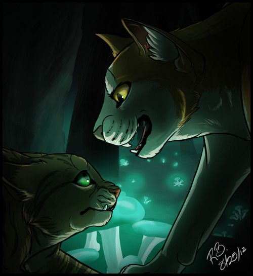 Warriors Forest Of Secrets Lexile: 166 Best Images About Warrior Cats ♥ On Pinterest
