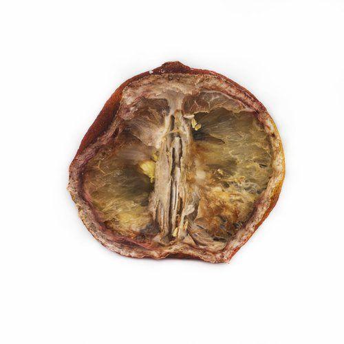 rotting fruit Nan Shartel (2012)