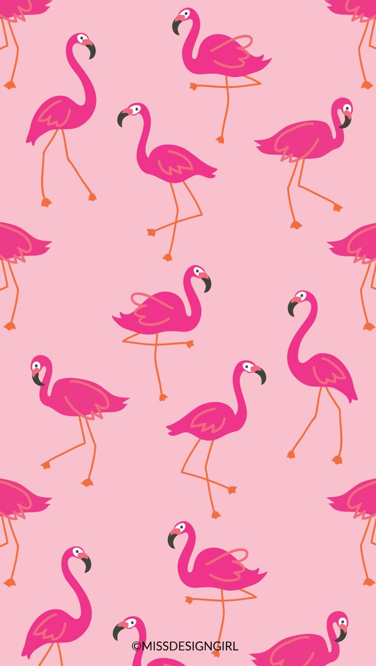 LETSFLAMINGLE.jpg (753×1332)