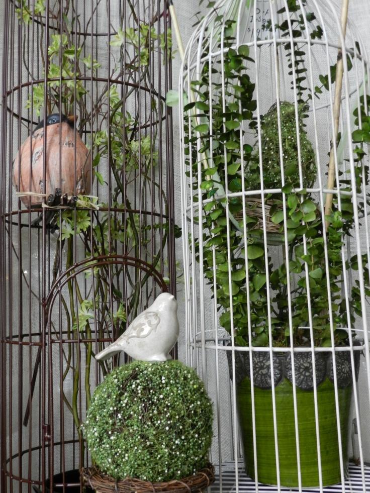 BirdcagesDecor, Birdcages