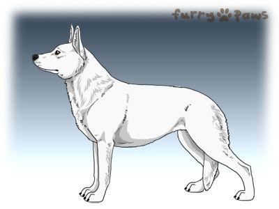 Furry Paws // WCSc {HEX} Fall of Babylon |23 lala 2str|1.490x *BoB x1*'s Kennel