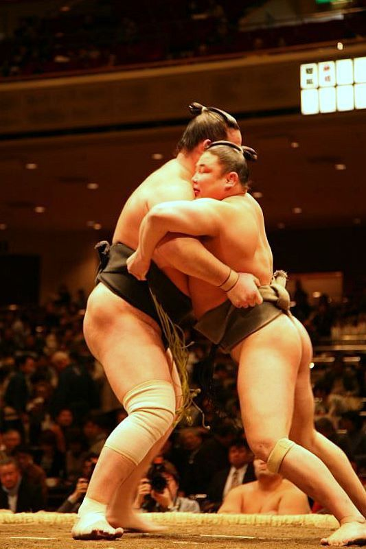 the sport of sumo a part of japanese culture Sumo wrestling is an ancient sport that is an integral part of the japanese culture and history here are the basic sumo wrestling rules with details on their customs, traditions, and practices that make this sport a truly fascinating spectacle.