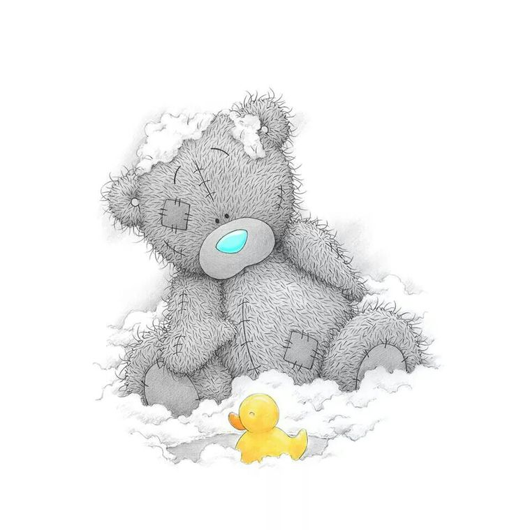 Рисунок мишки тедди