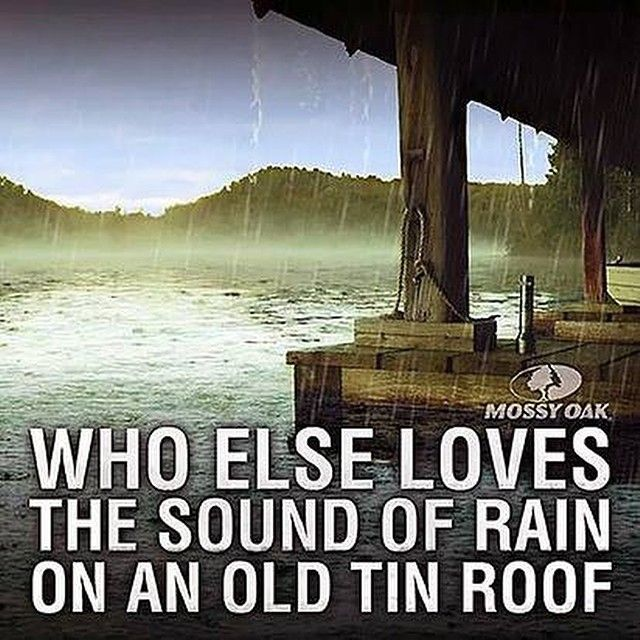An Old Tin Roof And A Rainy Day!