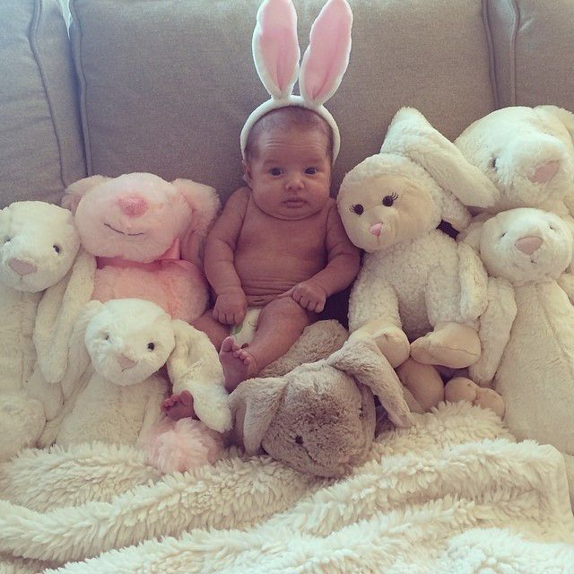 Baby Bunny from Vivianne Rose Decker's Cutest Pics  Can you spot the baby among the bunnies?