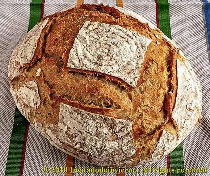 Pan hecho con masa madre natural de San Francisco