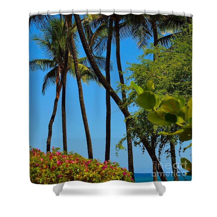 Tall Shower Curtain featuring the photograph Palms And Sea Grapes by Jennifer Capo
