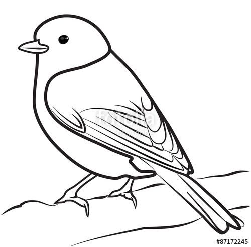 Line Drawing Of Animals And Birds : Best tree images on pinterest coloring pages