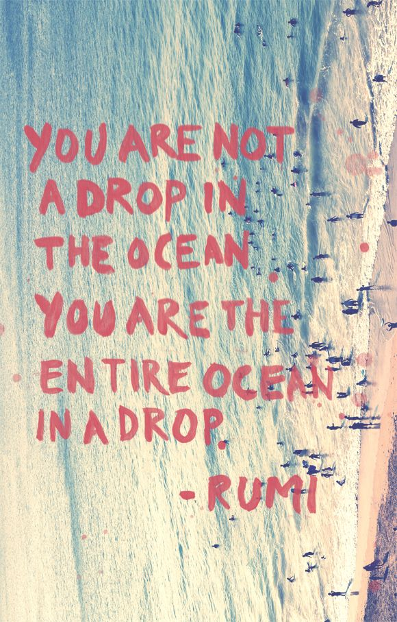 you are not a drop in the ocean. you are the entire ocean in a drop. -rumi