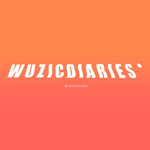 Success Maake, WuzicDiaries 2015.