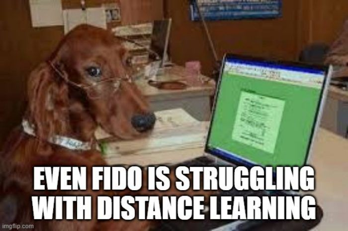 Funny Distance Learning Memes Distance Learning Learning Memes