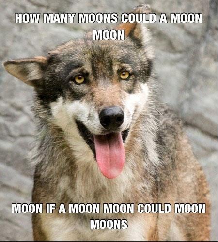 Moon Moon moons moons @BrittainWhiteside-Galloway