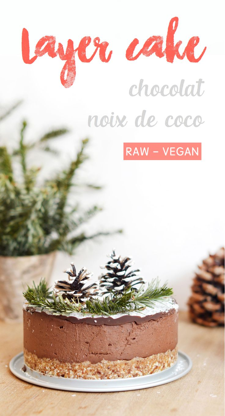 Layer cake chocolat - noix de coco (cru, vegan, sans gluten) - Sweet & Sour | Healthy & Happy Living