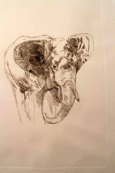2014 -- Joel Rogers -- yr.8 -- dry point etching