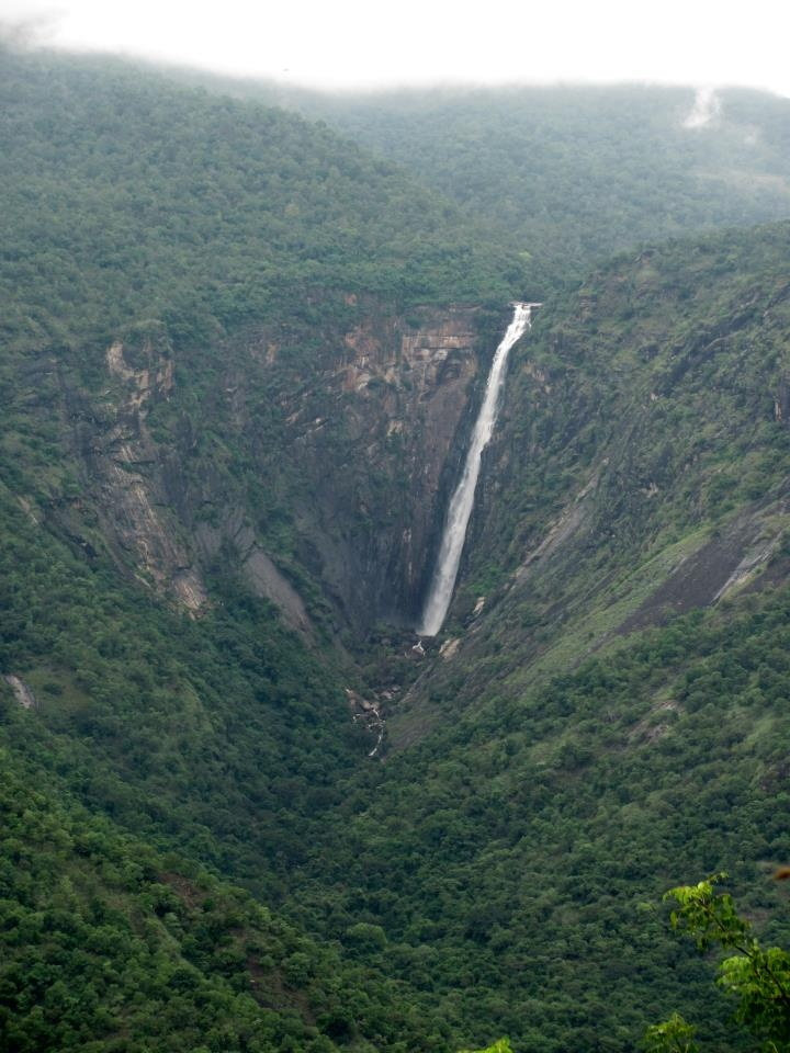 Thalaiyar Falls or Rat Tail Falls, Palani Hills, Dindigul District, Tamil Nadu, India.  The top of the falls is a rewarding and challenging hike destination. Discover India, Hassle Free with www.ziptrips.in