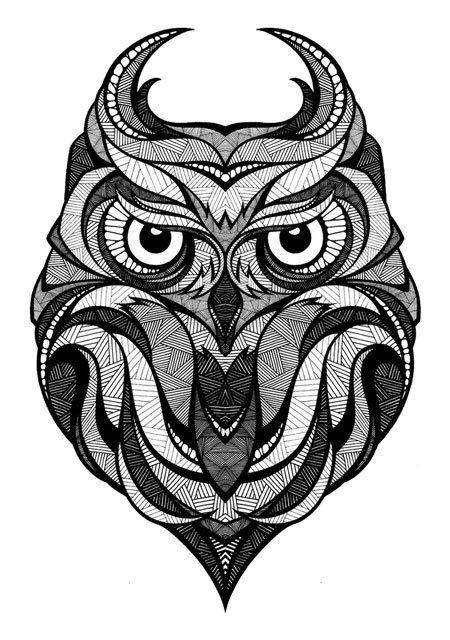 Owl illustration, black and white