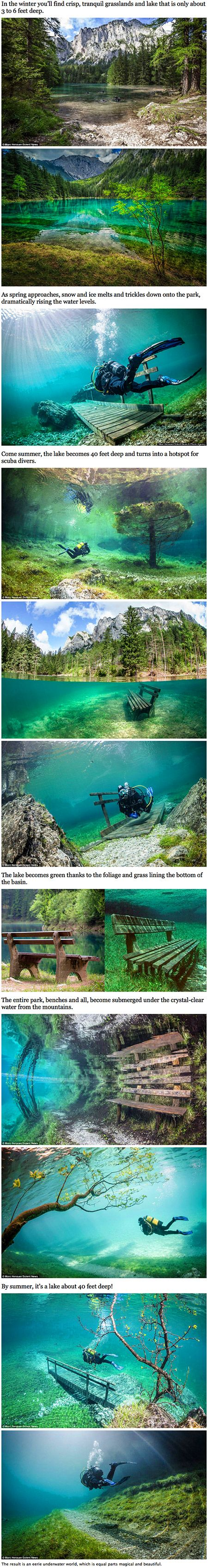 Gr�ner See (green Lake) Is A Lake In Styria, Austria Known For Its