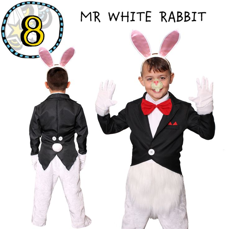 Alice In Wonderland Book Day Ideas : Best official top children s book character costumes