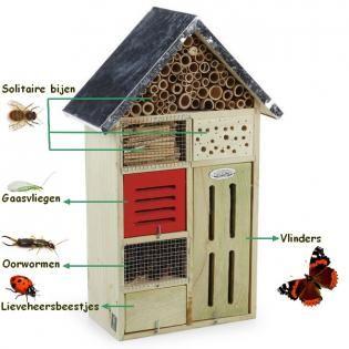 Insectenhotel vlinders, lieveheersbeestjes, gaasvliegen, oorwormen en solitaire bijen