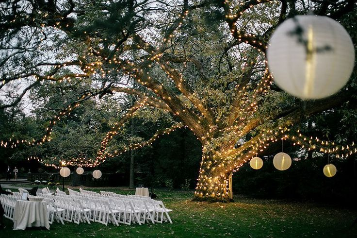 Moonlight Pennsylvania Wedding Under a Sparkling Tree at Aldie Mansion - MODwedding  http://www.modwedding.com/2015/01/06/moonlight-pennsylvania-wedding-sparkling-tree-aldie-mansion/