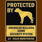 my house is protected by 2 bullies