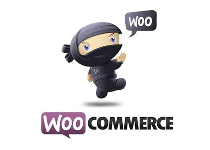 Masz w nazwie domeny woo? Może się do ciebie odezwać Automattic w sprawie naruszenia znaku towarowego // #WordPress