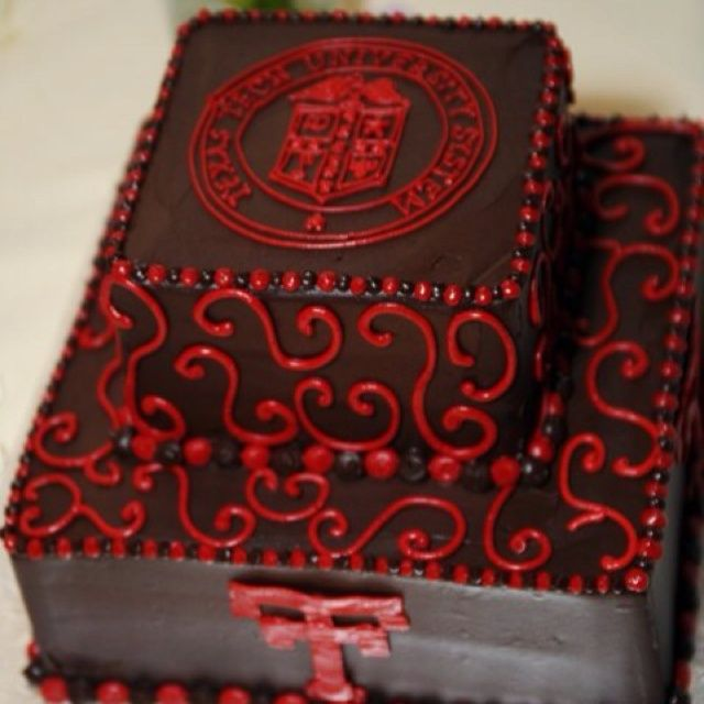 Texas Tech Cake Ideas | Coolest Skate Park Birthday Cake 26