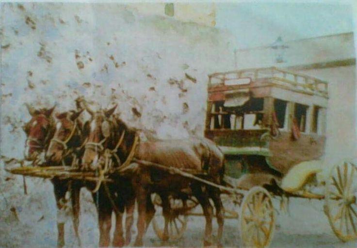En 1884  empezo a operar un carruaje ,que hacia un viaje diario  Santa Cruz  La Laguna.