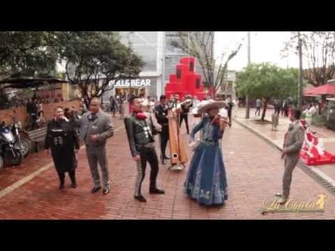 Flashmob Mariachi Internacional La Chula Bar Bogotá - YouTube