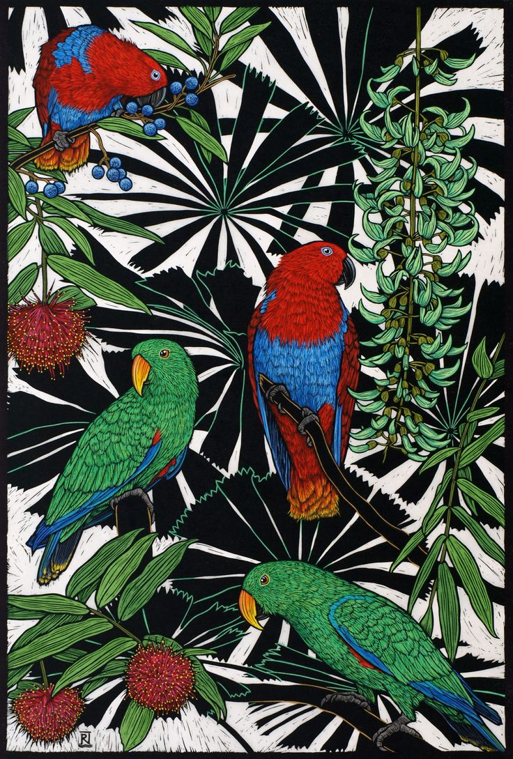 Eclectus Parrots - Hand coloured linocut on handmade Japanese paper by Rachel Newling