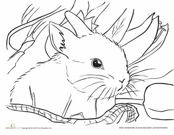 232 best Holidays Easter Coloring Sheets images on Pinterest