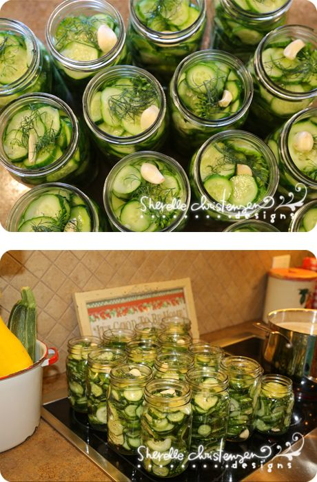 Dill Pickles Recipe and Canning