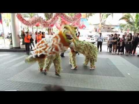 A traditional Chinese New Year tiger dance performed with a modern twist: shuffling. Aw yeah~