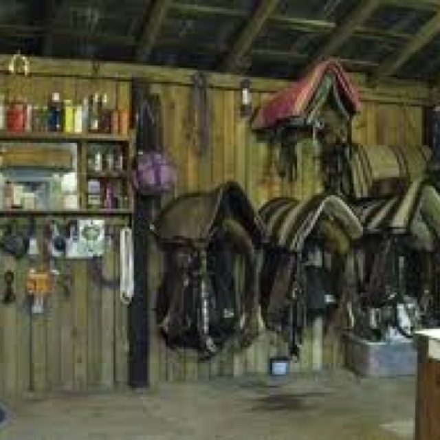 17 Best Images About Tack Room On Pinterest Western