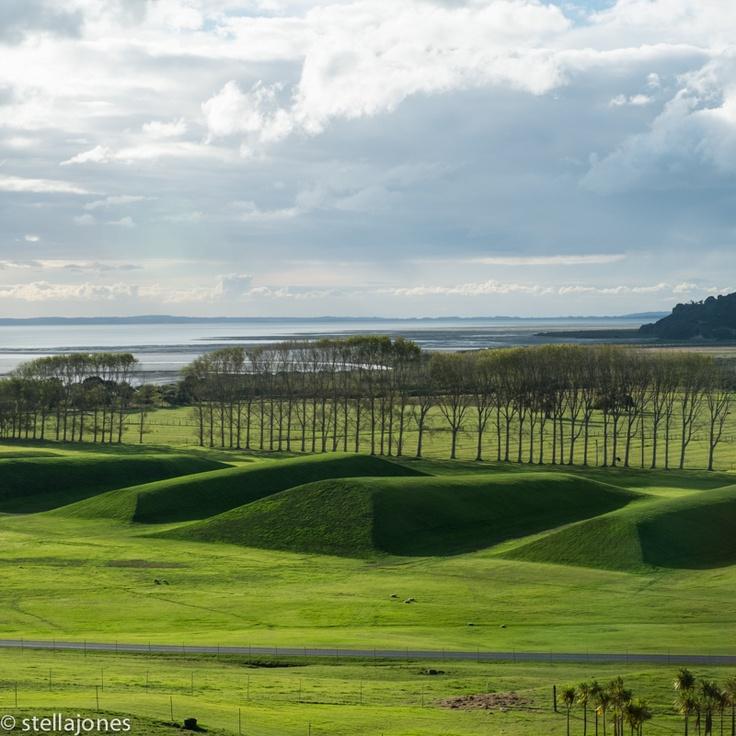 Folded Land - land art by Maya Lin, Gibbs Farm, New Zealand