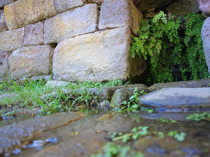 E' sicuramente d'obbligo sostare ai piedi del tempio e assaggiare le sue acque, leggere come poche al mondo. E stare lì in silenzio a godere delle musiche della natura e della magia del luogo.