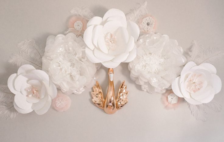 Now this is certainly the most gorgeous wall flower we've ever seen!