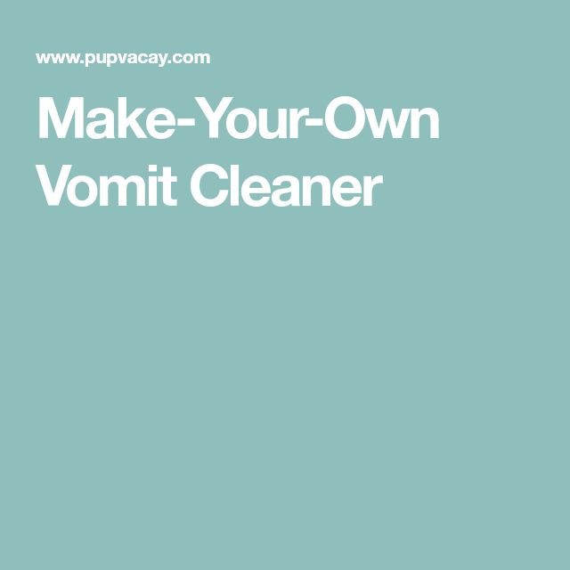 Make-Your-Own Vomit Cleaner