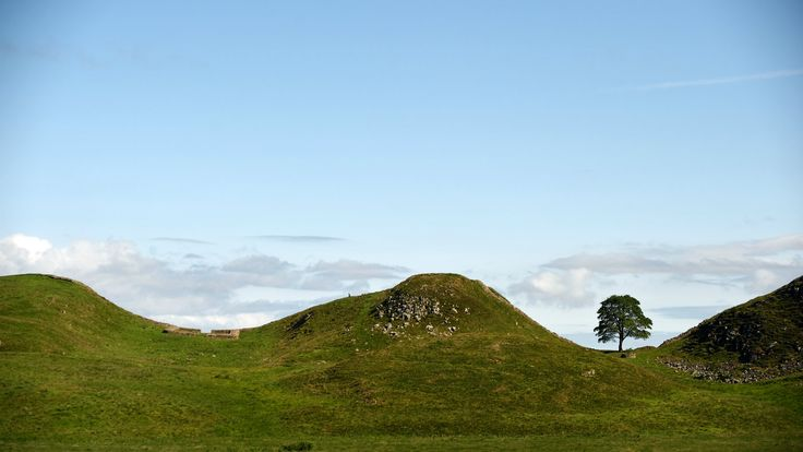 Hadrian's Wall and Housesteads Fort | National Trust