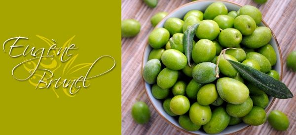 Eugène BRUNEL, un passionné de l'olive, crée sa confiserie à Nîmes, de manière à vendre en fûts de châtaigniers de diverses contenances les olives récoltées en Octobre jusqu'à la fin mars.