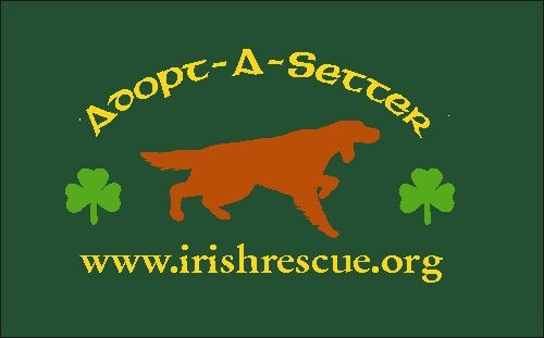 279 Best Animal Advocate Organizations Images On Pinterest