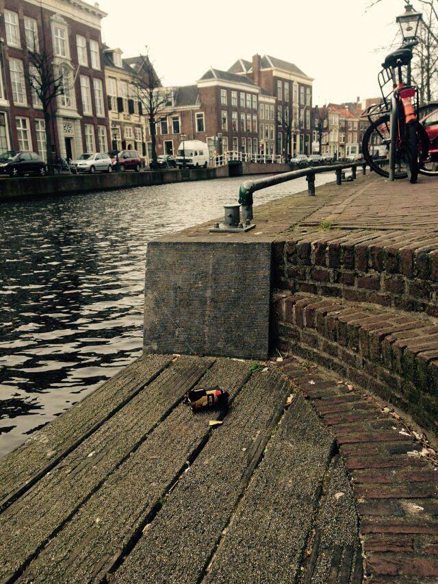 Leiden's canals