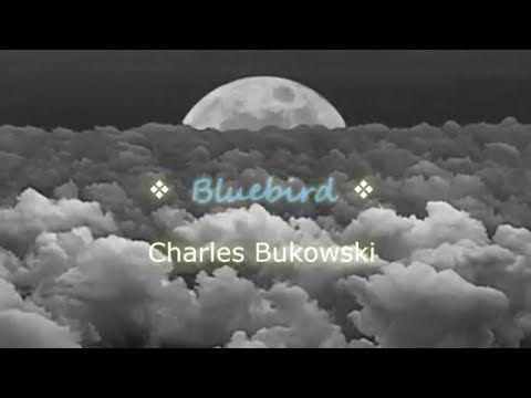 Charles Bukowski - Bluebird - YouTube