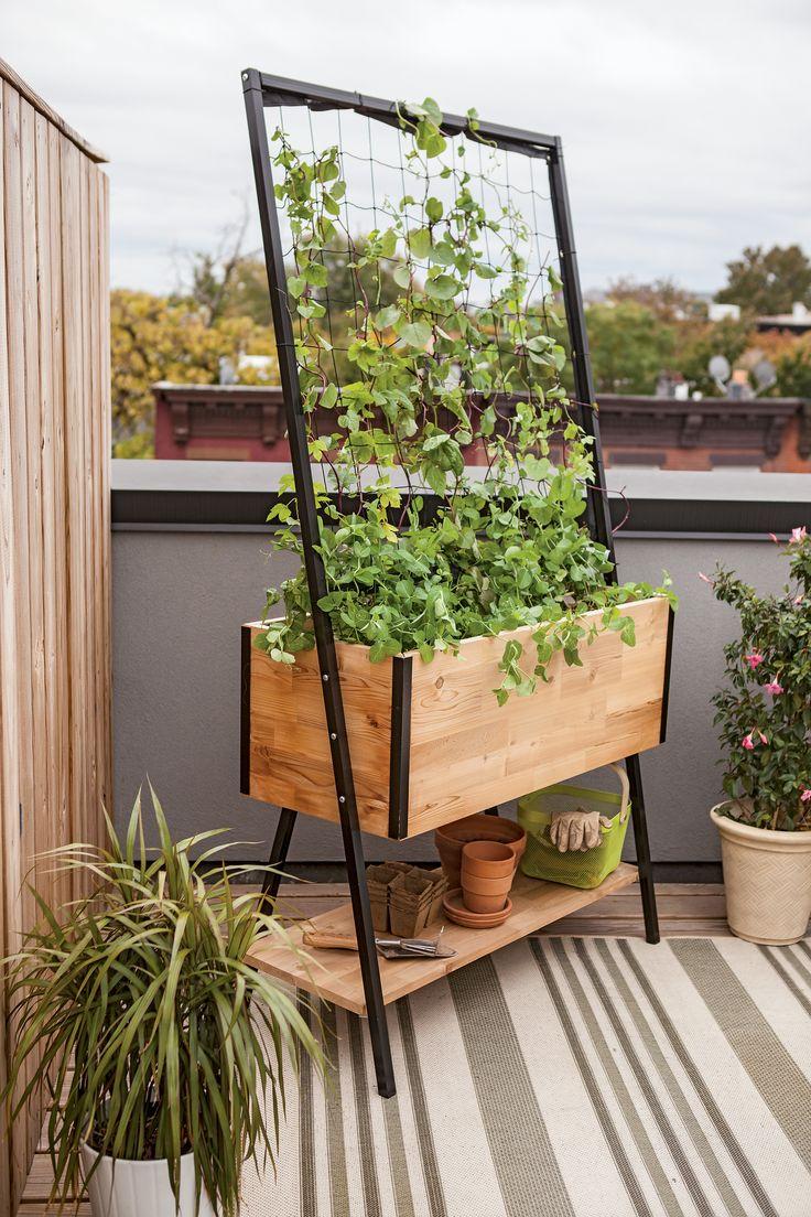 Cedar Planter Box: Apex Trellis Planter - Elevated Planter +Trellis