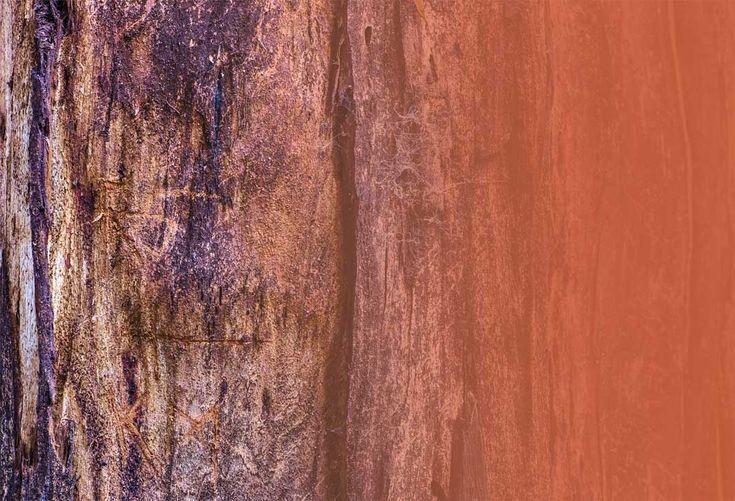 Kleuren zijn ontzettend belangrijk in ieder interieur. Kleuren zorgen voor sfeer en uitstraling en doen wat met je. Groen staat bijvoorbeeld bekend als een rustgevende kleur, terwijl geel juist meer vrolijk en sprankelend is. Wit is steriel en zakelijk. In keukens wordt al sinds jaar en dag veel...