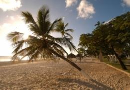Weather in Aruba