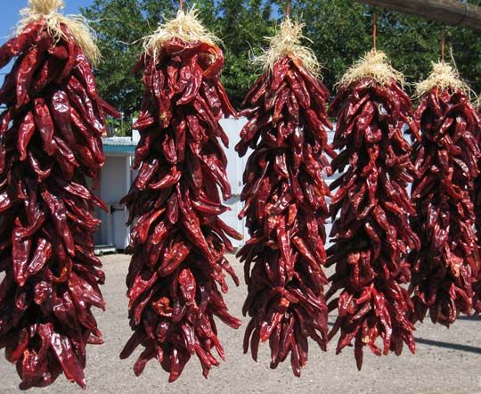 NM Red Chile Ristras-such a beautiful site in NM. People hang them under the eves to dry and use them all year to make savory red chile sauce.