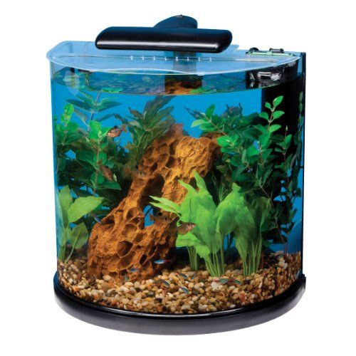 Tetra 29234 Half Moon Aquarium Kit, 10-Gallon - On Sale Now! #fish #tank #aquarium #sale #pets
